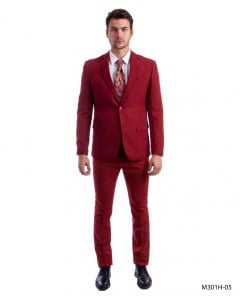 Tazio Men's 2 Piece Executive Suit - Bold Colors