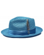 Bruno Capelo Men's Fedora Style Straw Hat - Varied Colors